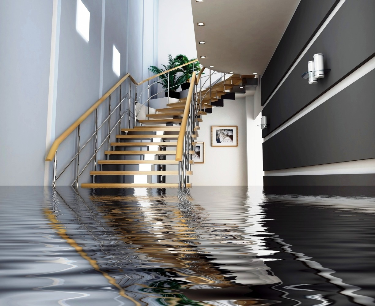 Water Damage Consequences
