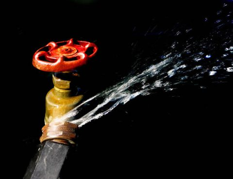 NYC Insurance & Plumbing Disasters – Case Study