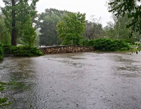 Flood- What is it exactly & how do you cover it?