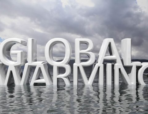 Controlling Personal Insurance Costs in a Rising Premium Climate