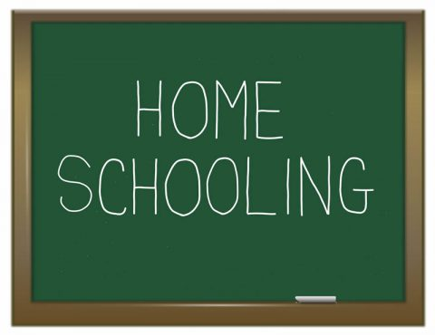 Building on Home Schooling